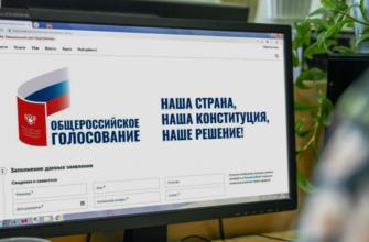 электронное голосование по конституции 2020